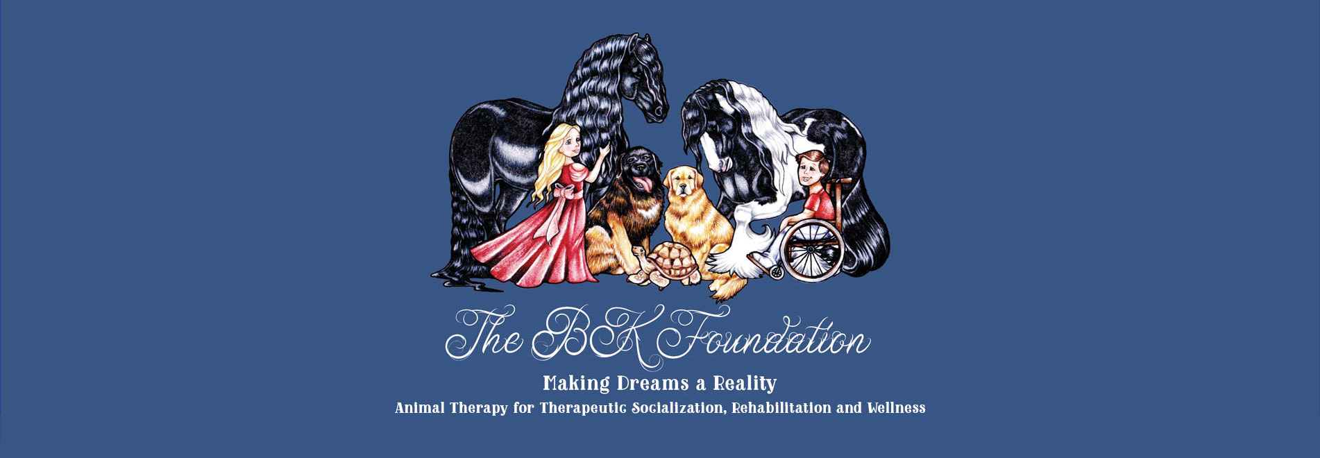 BK Foundation Banner